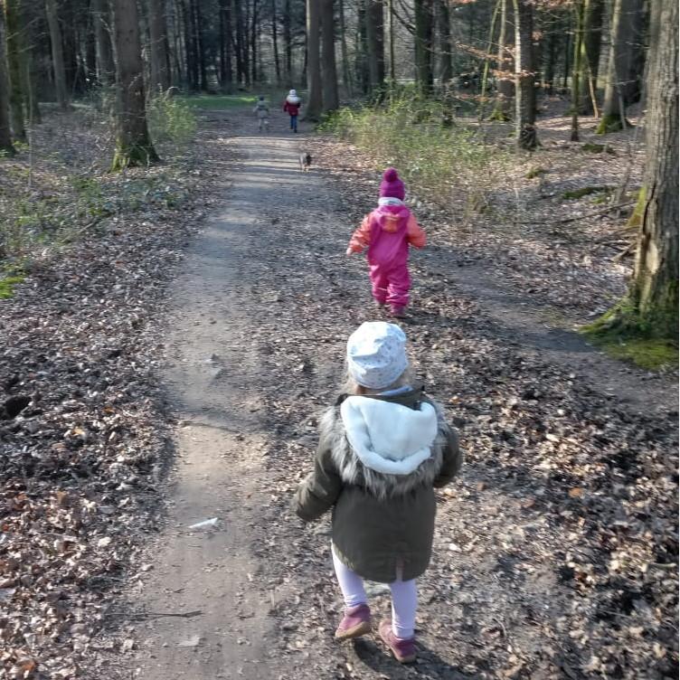 Kinder bei Waldspaziergang